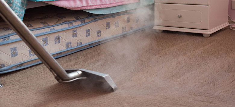 Steam cleaning a flea infested carpet.
