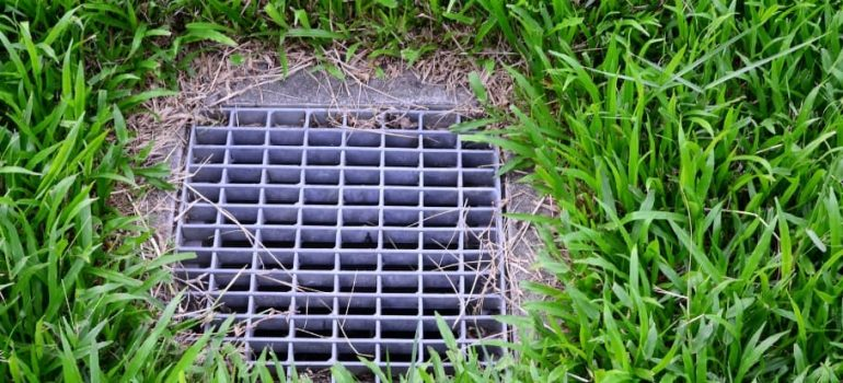 How to Maintain Your Backyard Drains