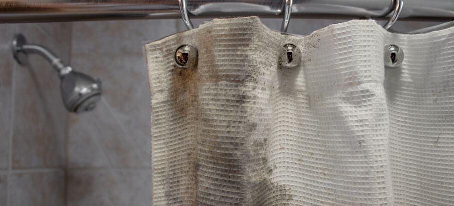 A guide on pretreating and cleaning shower curtains off mildew and mould.