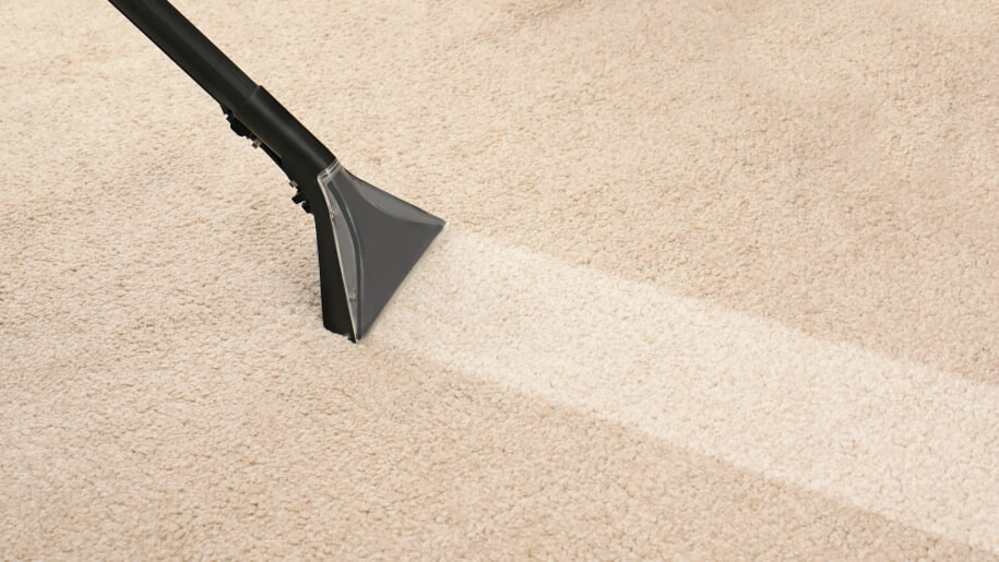 How Long Does It Take To Clean A Carpet Fantastic Services Aus