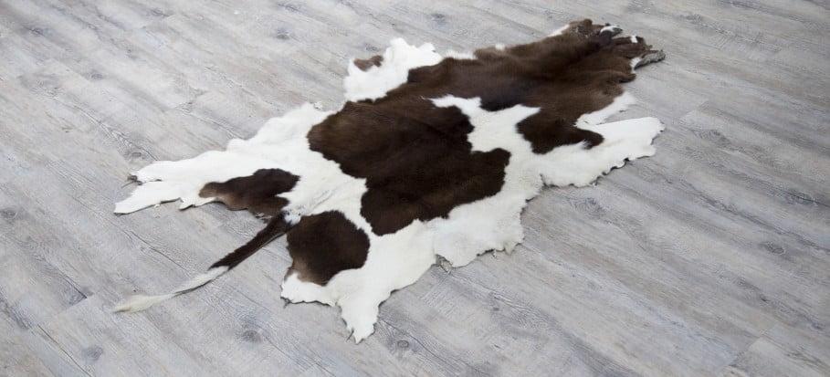 cleaning-cowhide-rug