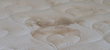 3 Simple Ways to Remove Mould from a Mattress - Featured Image
