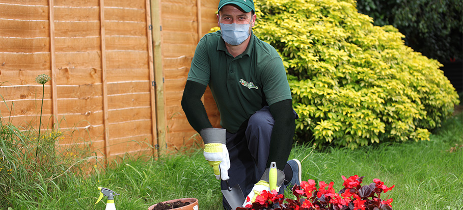Gardener with a mask