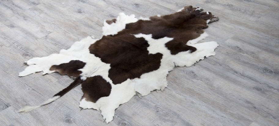 Clean and care for cowhide rug