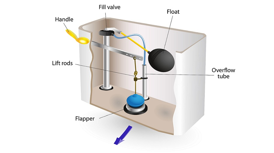 Graphic of toilet's flushing mechanism