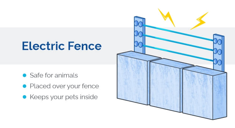Protecting your garden with an electric fence