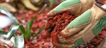 How to Mulch - Featured Image