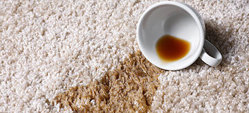Overturned cup with spilled tea on a carpet
