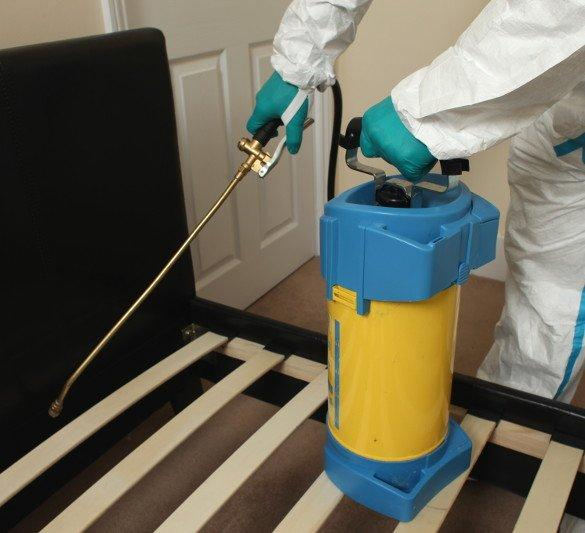 Pest controller spraying in bedroom
