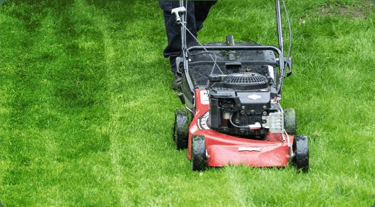 Fantastic Gardener mowing lawn