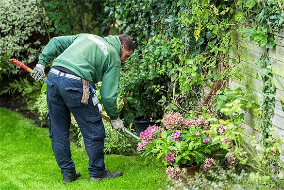 garden maintenance services north shore lawn mowing