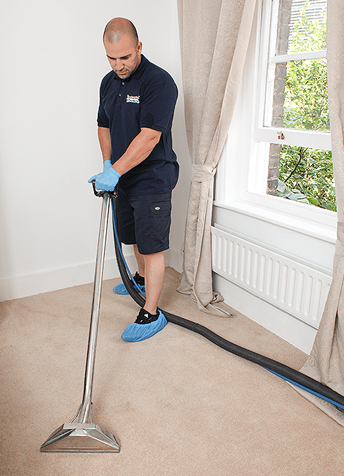 Technician cleaning a carpet