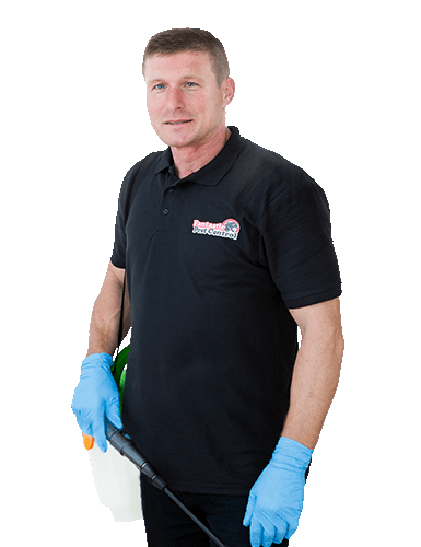 Pest control technician in Melbourne and Sydney