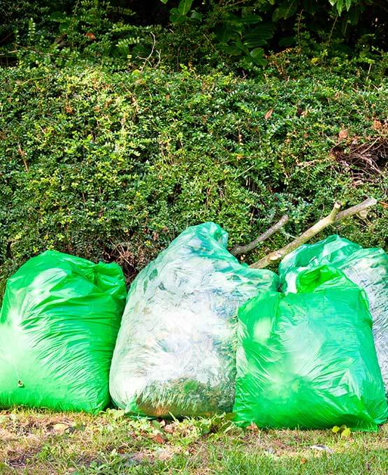 Garden waste collected in bags for waste removal