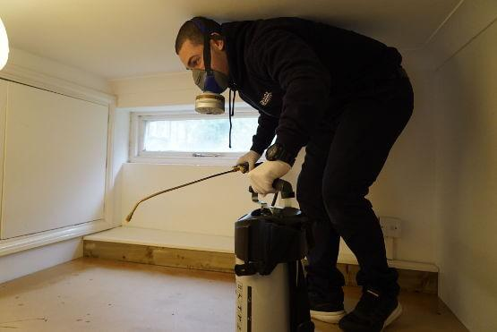 Pest controller spraying against cockroaches